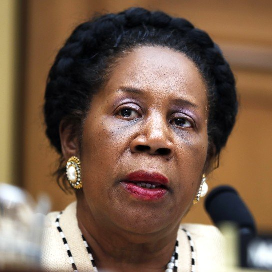 Democrats to Focus on Slavery Reparations Commission Bill in Near Future 2