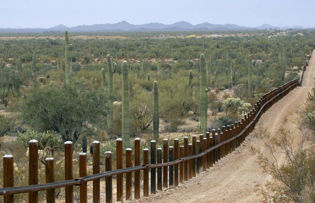 """ENVIRONMENTALISTS More Concerned with """"Cactus Park"""" Than NATIONAL SECURITY at Border Wall 1"""